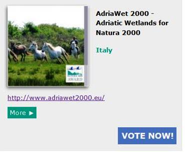 vota alto adriatico